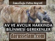 İslamda Av ce Avcılık